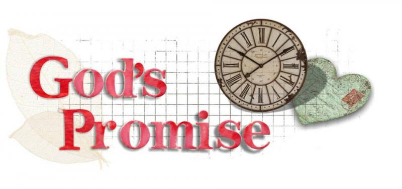 1 Chronicles 17: God's Promise to King David.
