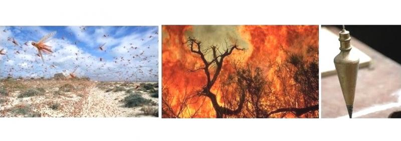 Amos 7: The Visions of the Locust Swarms, Fire, and Plumb Line, GOD's Judgments, Prophet Amos and Amaziah the Priest of Bethel.