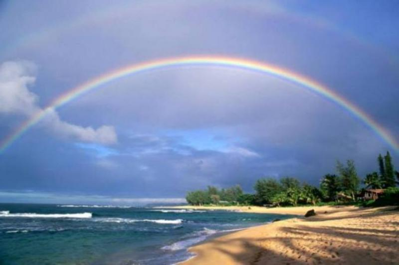 Genesis 9 – God's Promise and Covenant with Noah and His Descendants