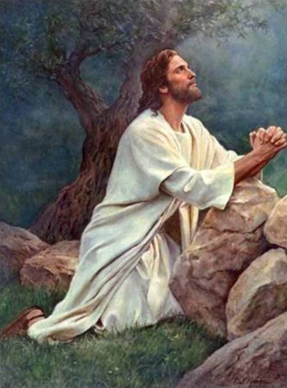 Mark 14d – Jesus Prayed at the Garden of Gethsemane