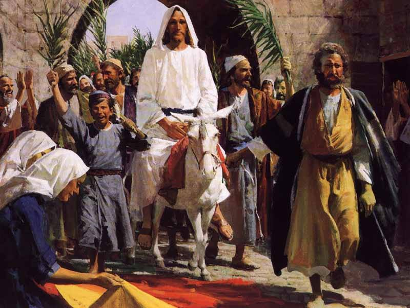 Matthew 21: Jesus Rode into Jerusalem, Jesus Drove Out Those Who Bought and Sold from the Temple, and Jesus Healed the Blind and the Lame Man in the Temple.
