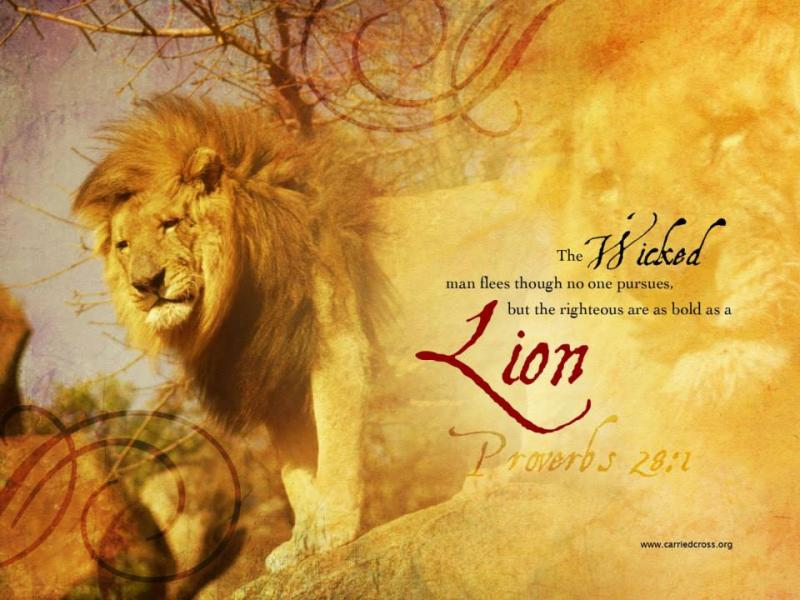Proverbs 28: The Righteous Are Bold as a Lion.